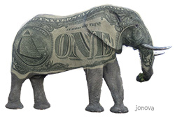 Climate Money elephant